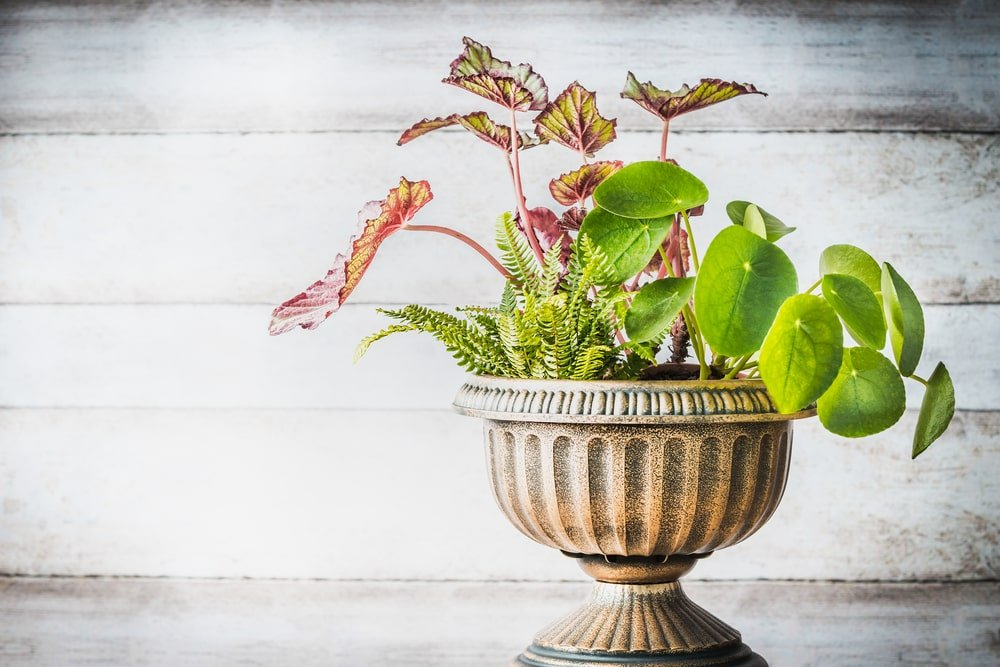 An elegant pedestal planter with three different plants on it.