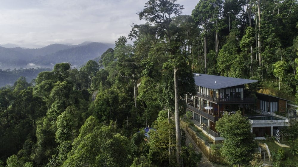 This is an aerial view of the house that has dark exterior tones and glass windows that maximize the surrounding lush mountainside landscape filled with tall trees.