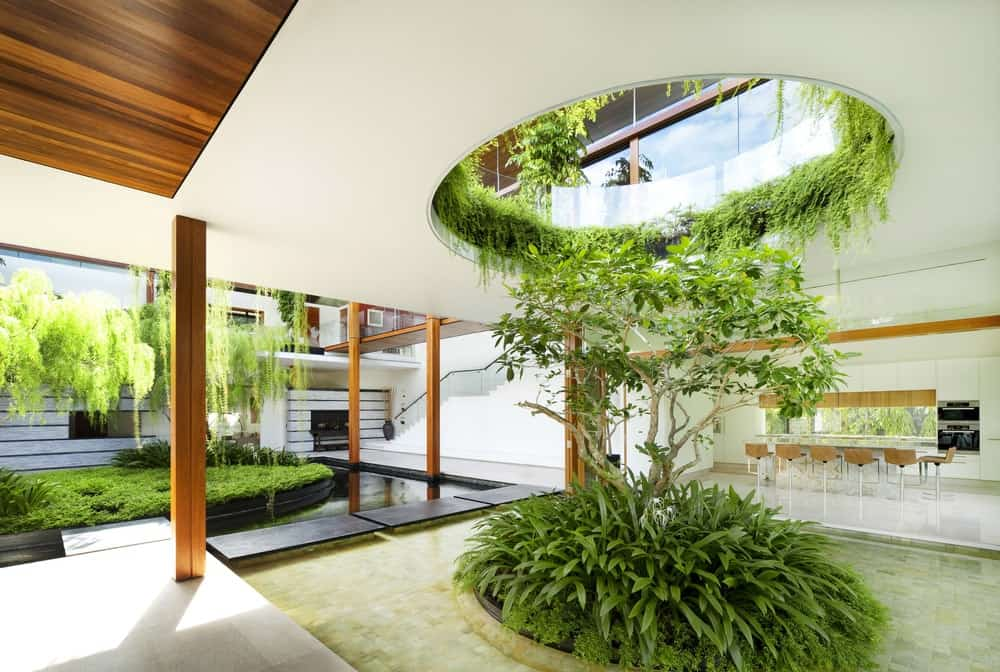 This is a part of the ground level with a landscaped medium tree with shrubs underneath a hole balcony from the second level.