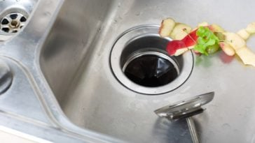 A close look at a sink with food waste on it about to be sent to garbage disposal.