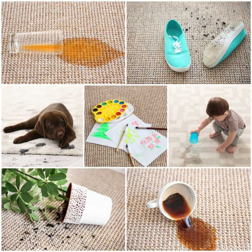 A collage of different types of stains on a carpet.