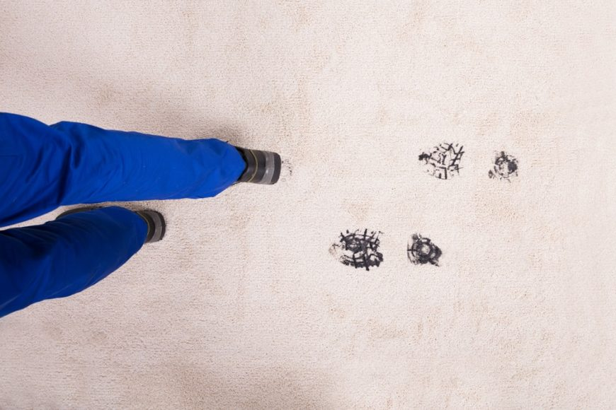 Shoe polish marks on the carpet.