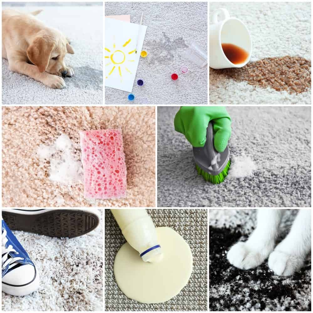 Different types of dirt on carpet.