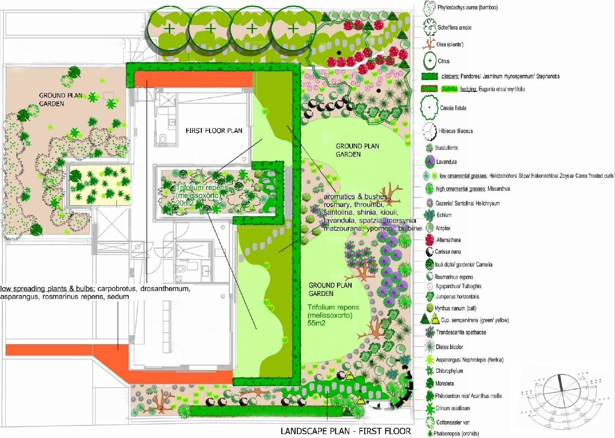 This is an illustration of the landscape plan with labels for the different plants and structures of the landscape.