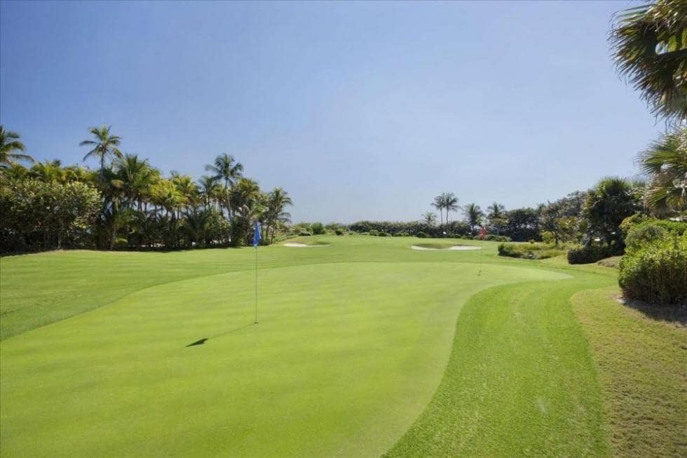 This is one of two practice golf courses of the property with a well-manicured grass lawn and tall tropical trees on the sides. Image courtesy of Toptenrealestatedeals.com.
