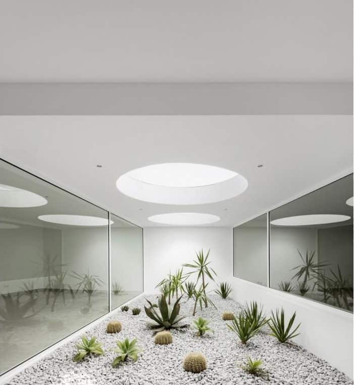 This is an area of the house with a glass-enclosed terrarium planted with various dessert plants brightened by the round sky lights.