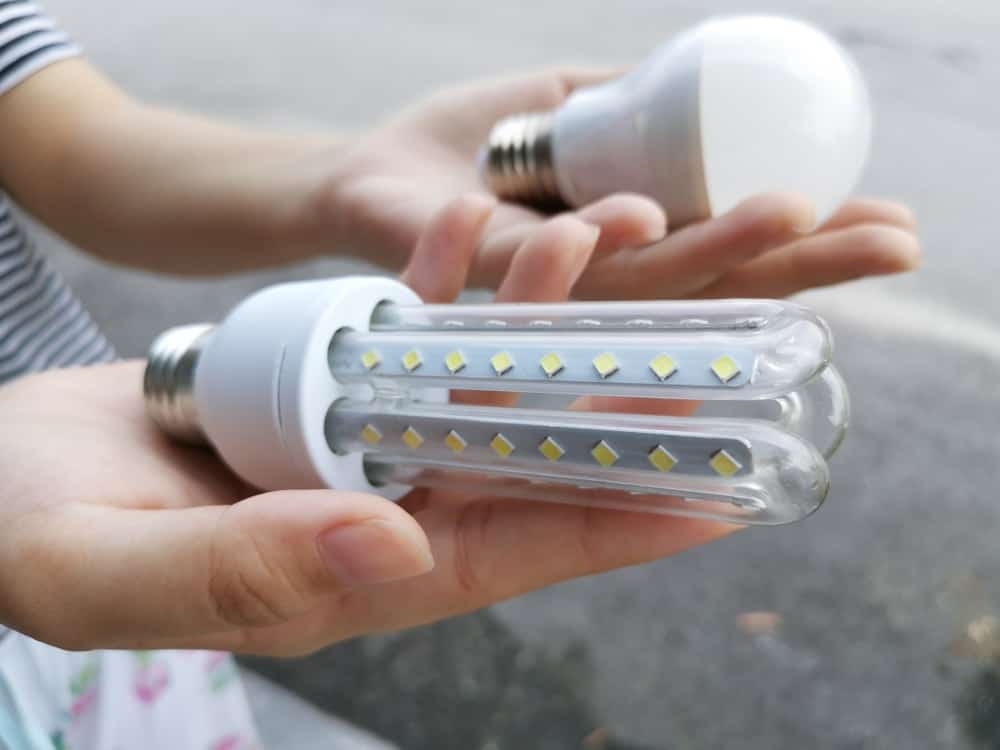 A woman comparing the corn LED bulb with a round LED bulb.