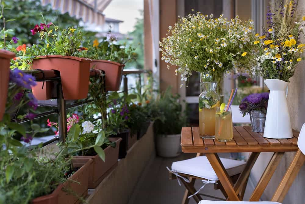 A balcony garden with lots of potted plants.