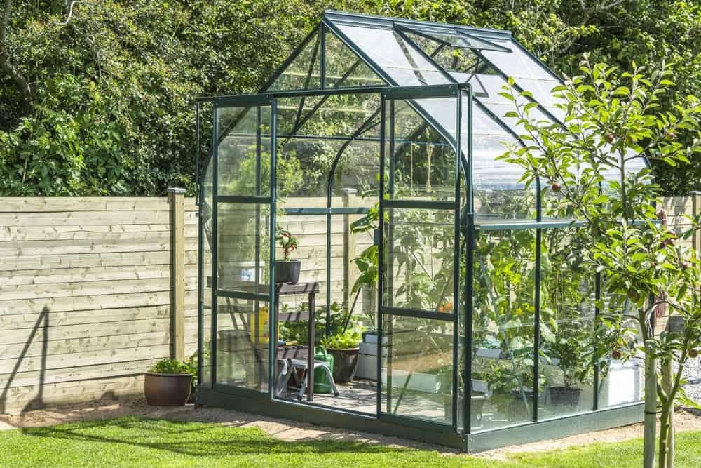 A small backyard greenhouse.