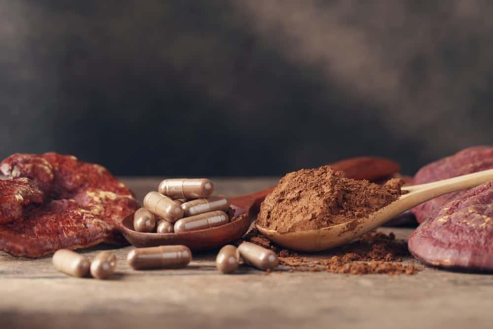 Medicinal pills made from mushroom.