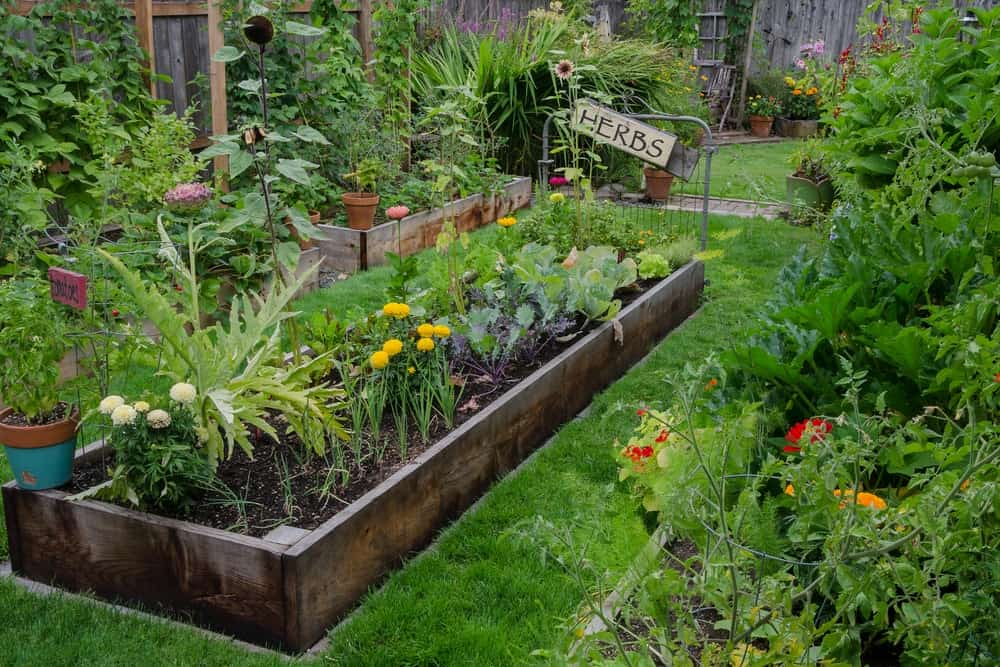 A planter in the garden filled with herbs and vegetables.