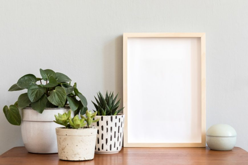 A decorative table setup with potted plants and a shadow box picture frame.