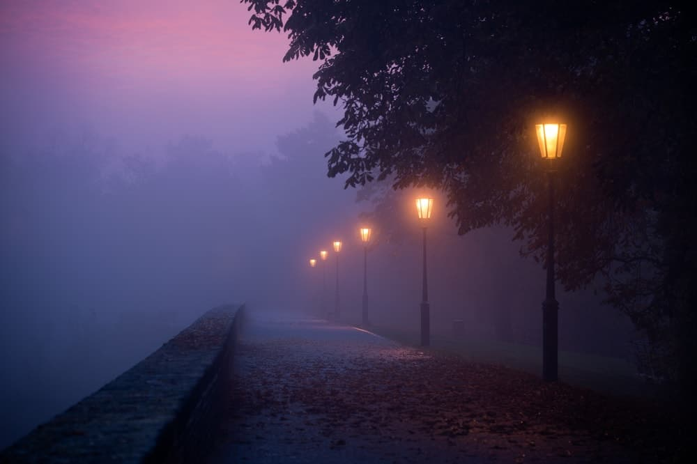 A foggy morning at the park with lit lamp posts.