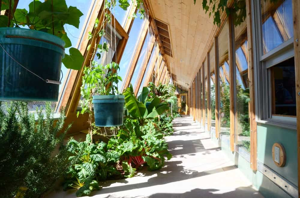 This is a look at the interior of an earthship featuring a long hallway with potted plants.