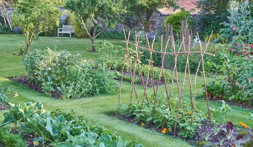 A large vegetable garden.