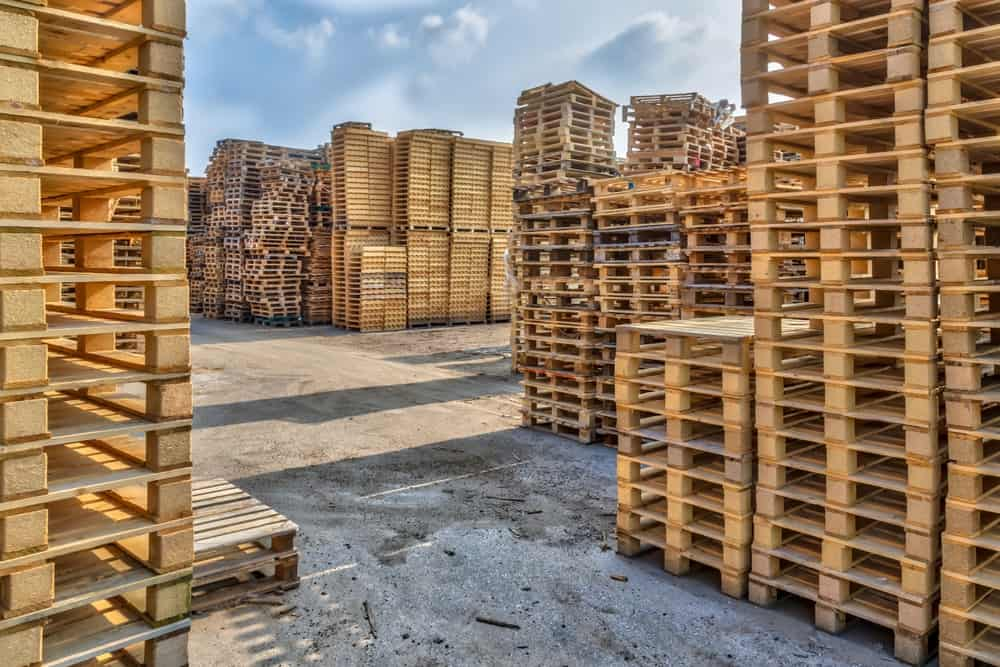 A massive concrete lot filled with tall stacks of wooden pallets.