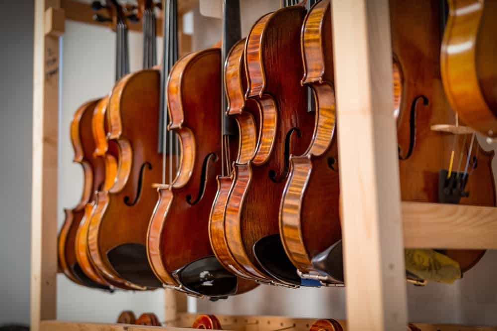 A row of violins on display at the repair shop.