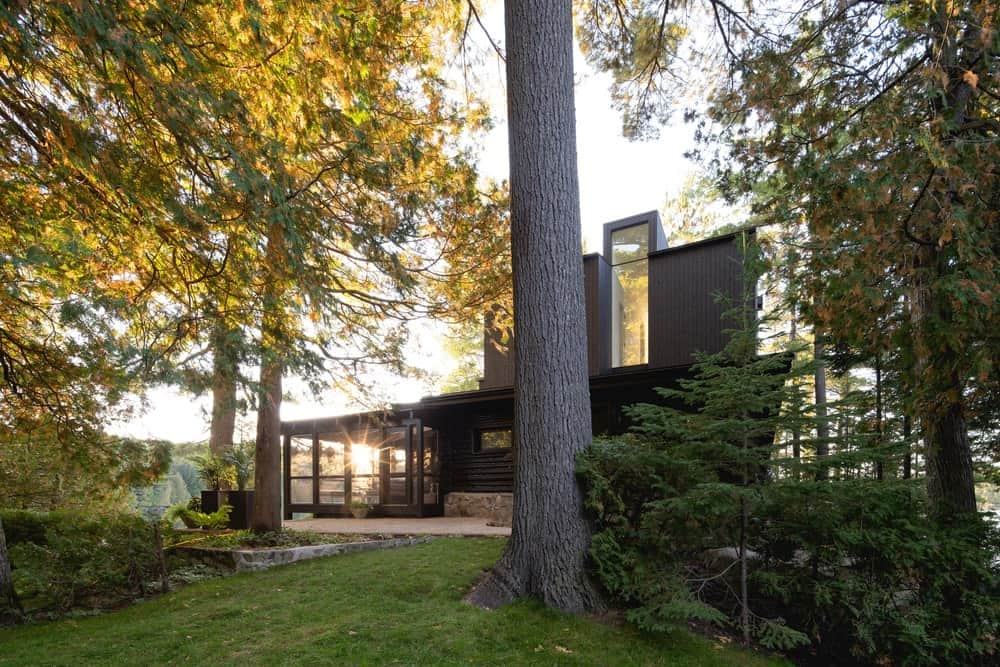 This is a view of the exteriors of the front side of the house featuring tall trees and shrubs that make the glass walls and black exterior walls of the house stand out.