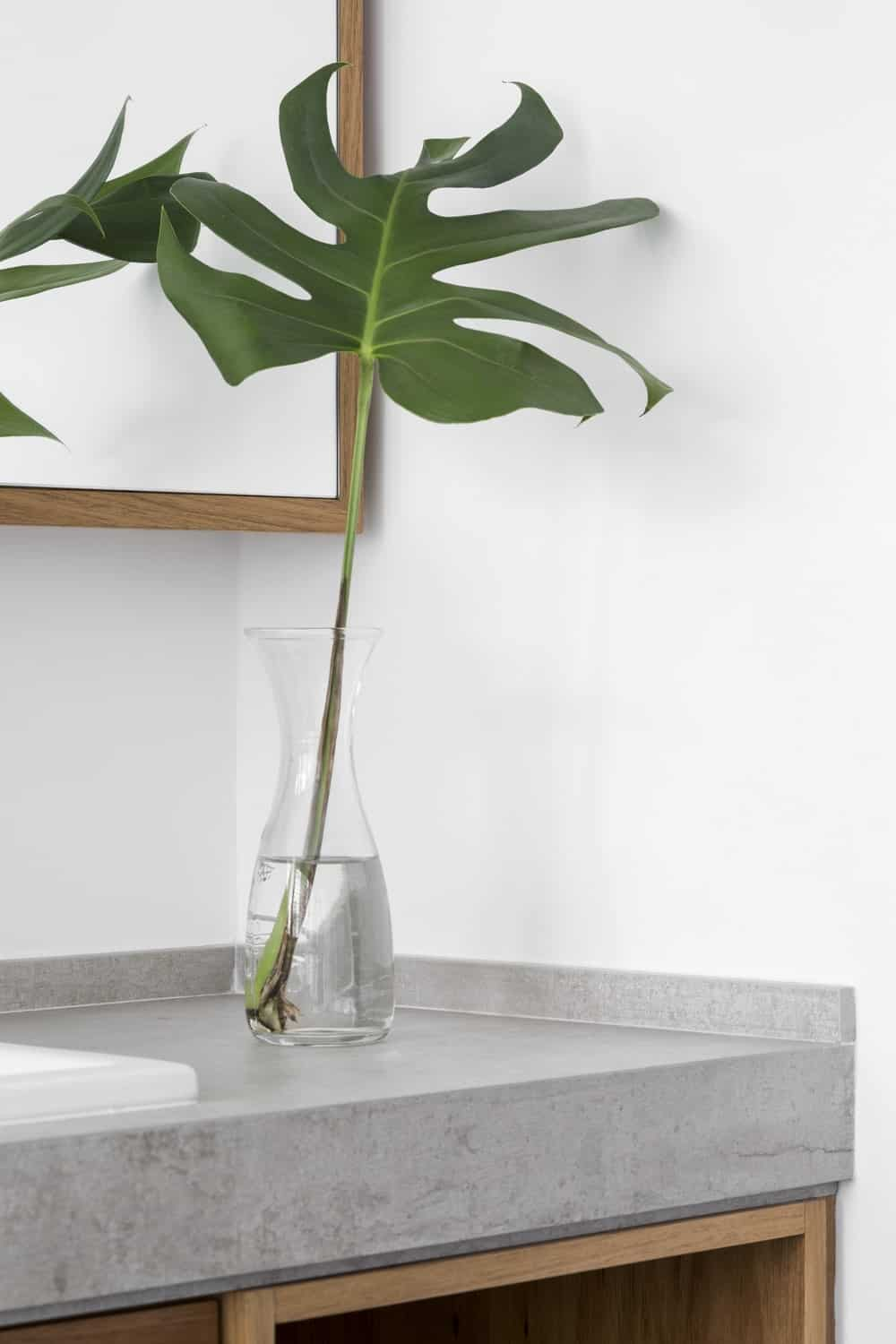 This is a closer look at the countertop of the vanity adorned with a vase with a plant.