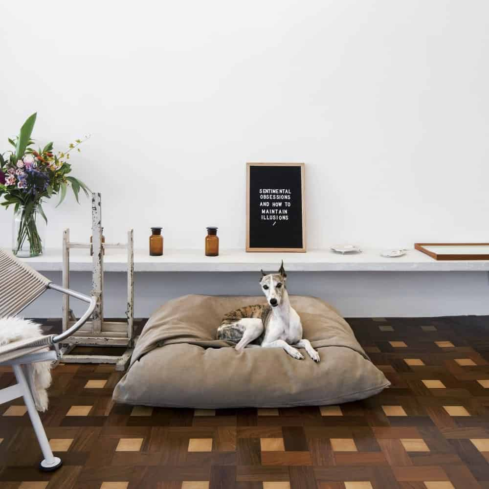 Underneath the floating shelf is the doggy bed and the patterned hardwood flooring that contrasts the bright wall.