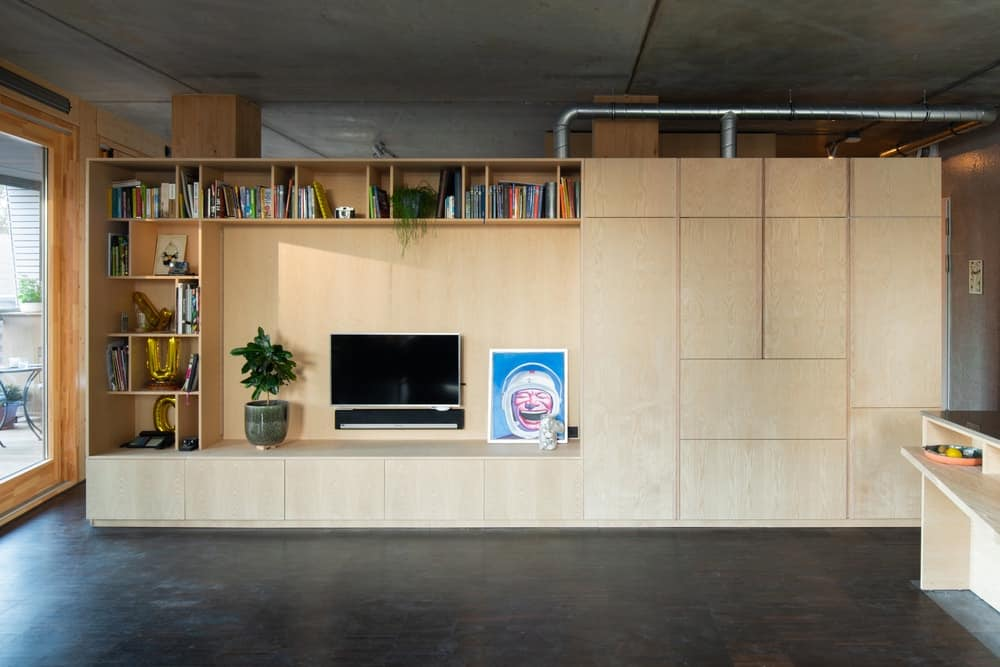 This is the large wooden structure across from the sofa with built-in cabinets, shelves and houses the TV in its light wooden tones that contrast the floor.