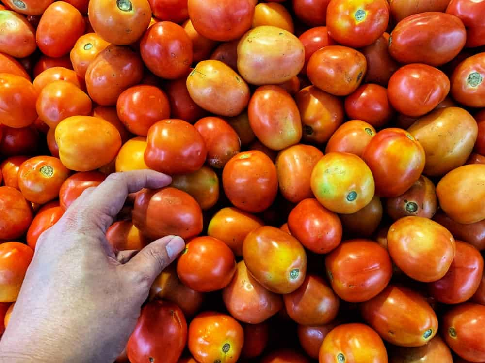 A close look at someone picking out tomatoes from the market.