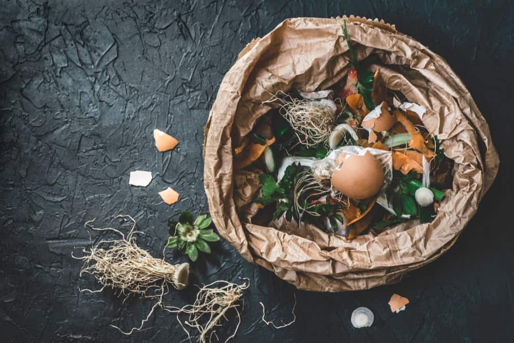 A look at organic garbage material perfect for composting.