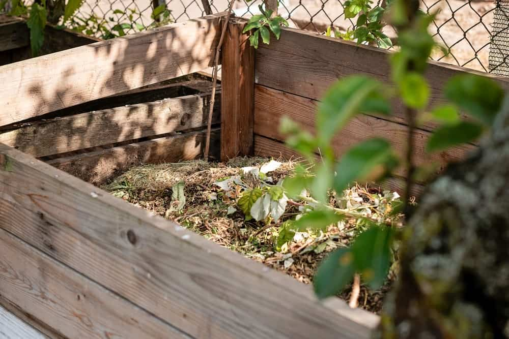 A look at a wooden compost bin in the yard.