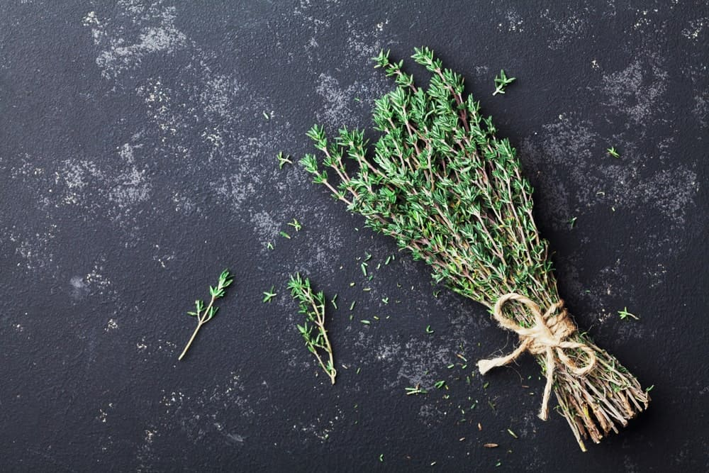A cluster of thyme on a dark surface.