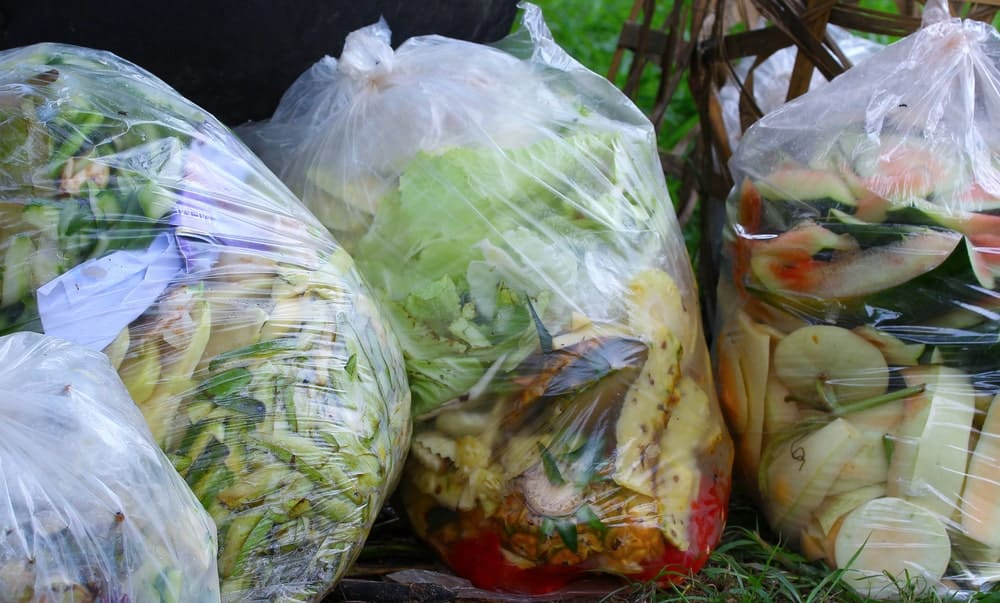 Plastic bags filled with food waste.
