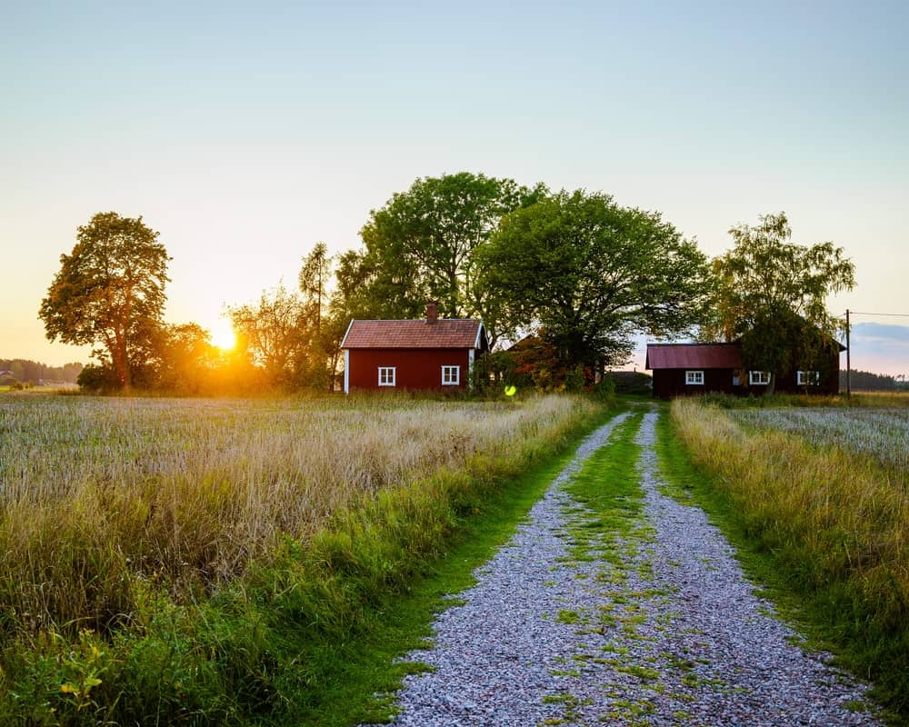 A look at a rural farm residency from the vantage of the graveled driveway.
