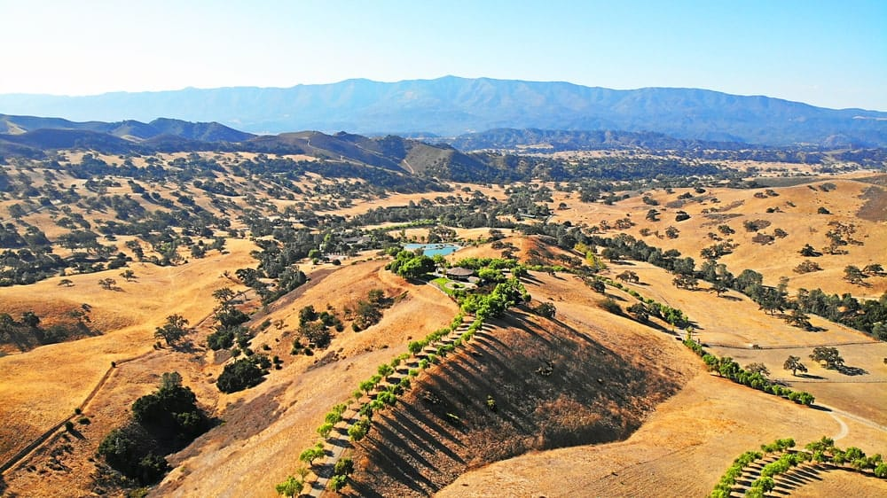 This is an aerial view of the massive ranch showcasing the driveways, the trees and the land. Image courtesy of Toptenrealestatedeals.com.