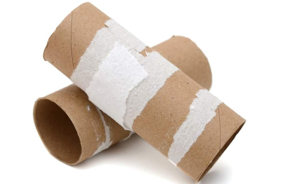 A couple of cardboard cores of bathroom tissues.