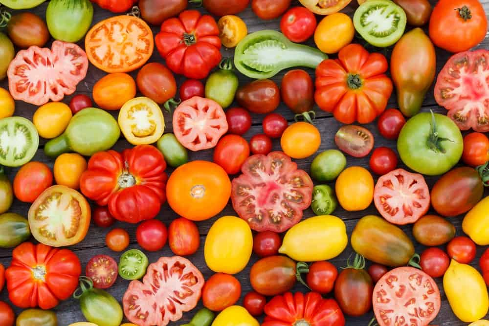 A close look at a variety of tomatoes.