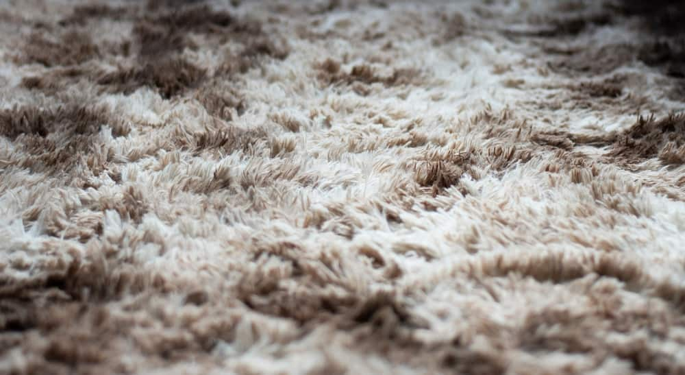 This is a closed look at a mixed texture shag carpet.
