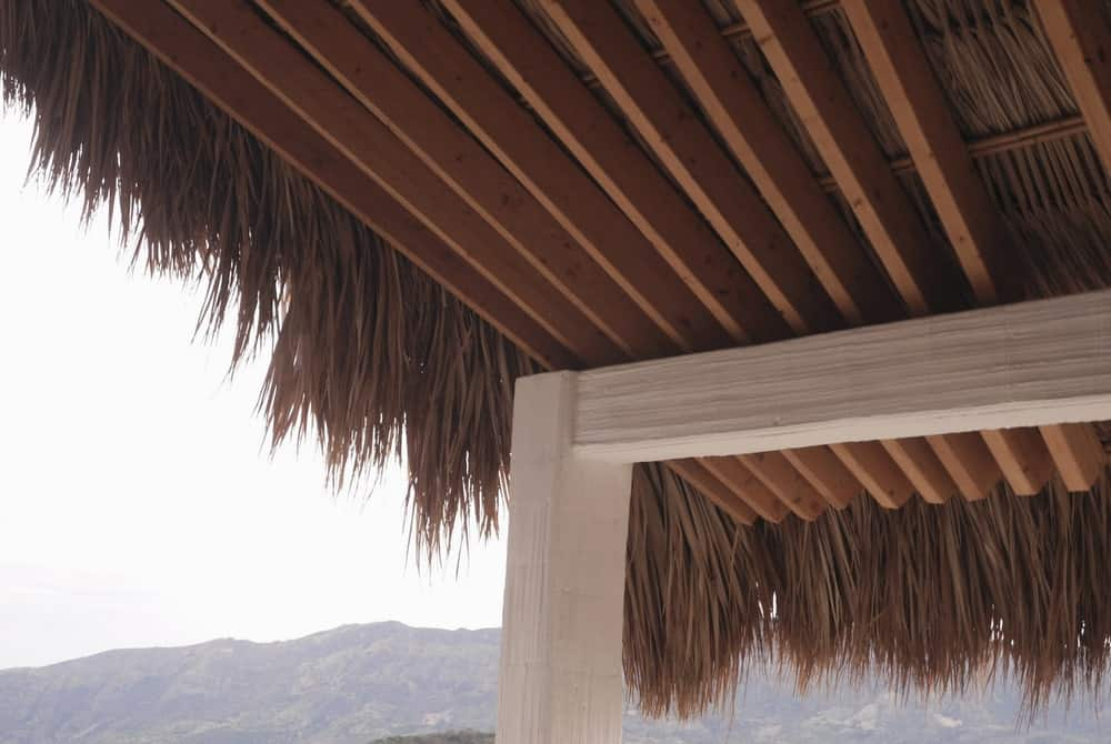 This is a close look at the beamed ceiling with palm on top.