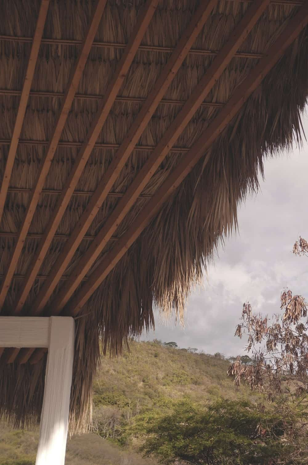 This is a close look at the palm and wood clap ceiling detail of the house.