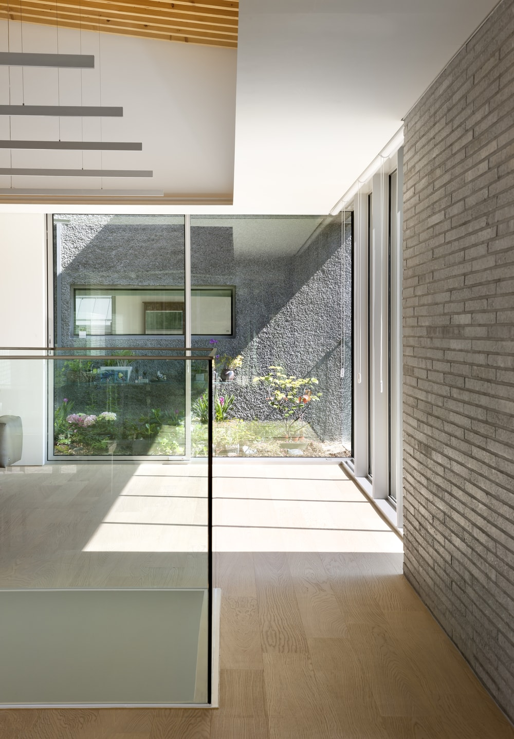 This is an interior view of the house with glass walls and a small garden right outside.
