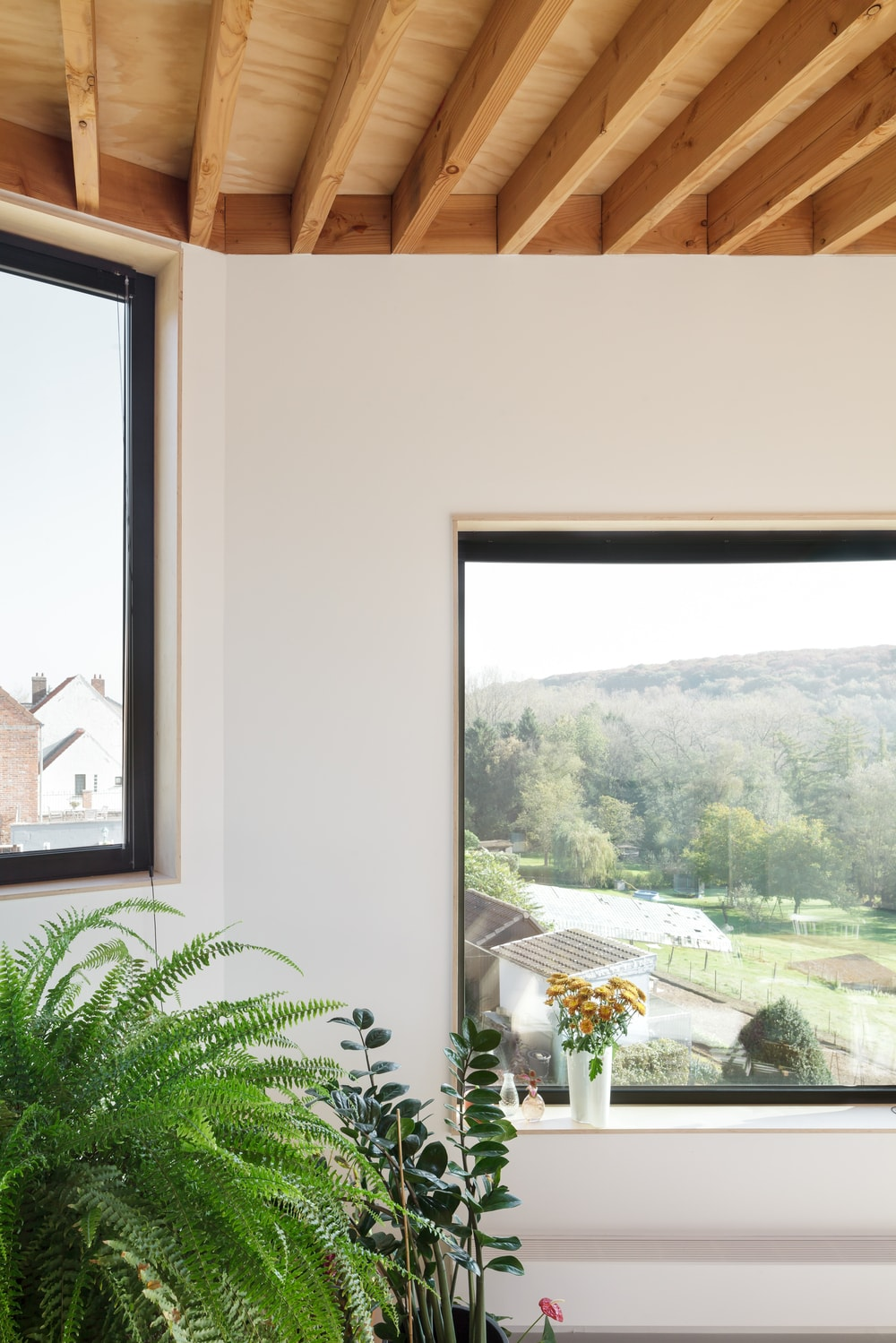 This is the couple of windows that can be seen from the vantage of the kitchen. These two has a sweeping view of the landscape below.