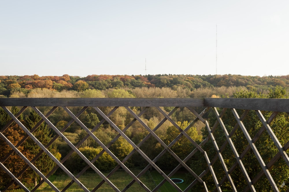 This is a closer look at the view of the treetops and landscape just beyond the patterned geometric railings of the balcony.