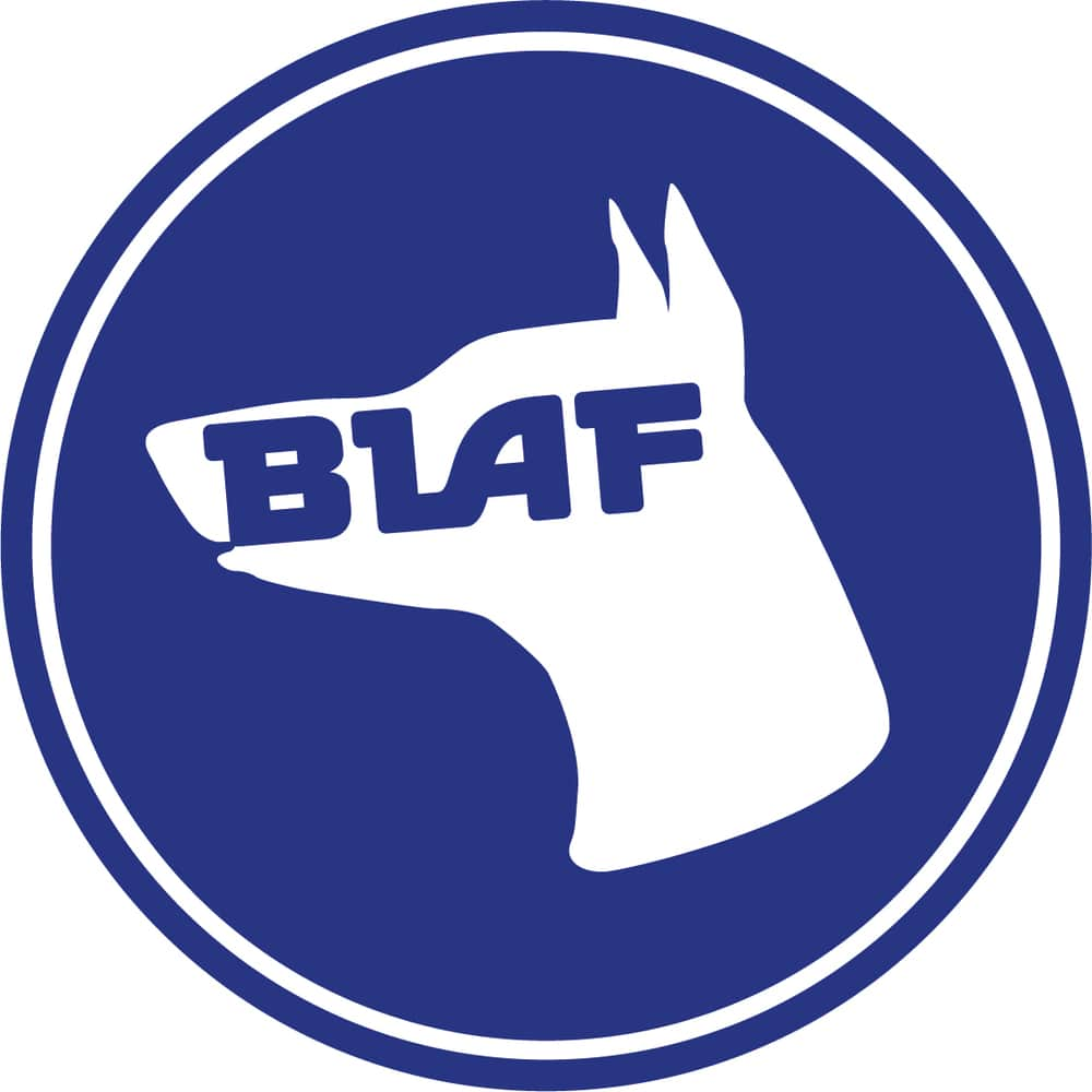 This is the logo of the BLAF archetural firm.