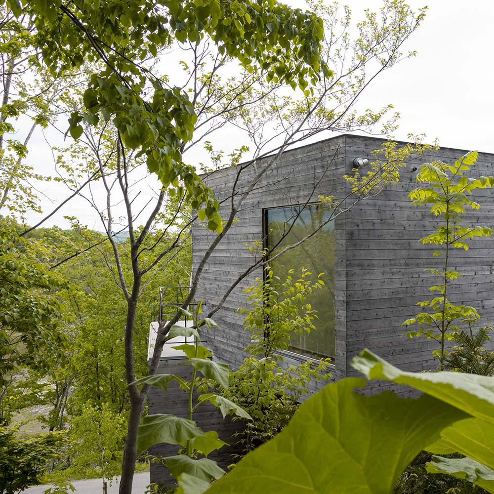 The gray exterior of the house makes it stand out against the green tall trees of the landscaping.