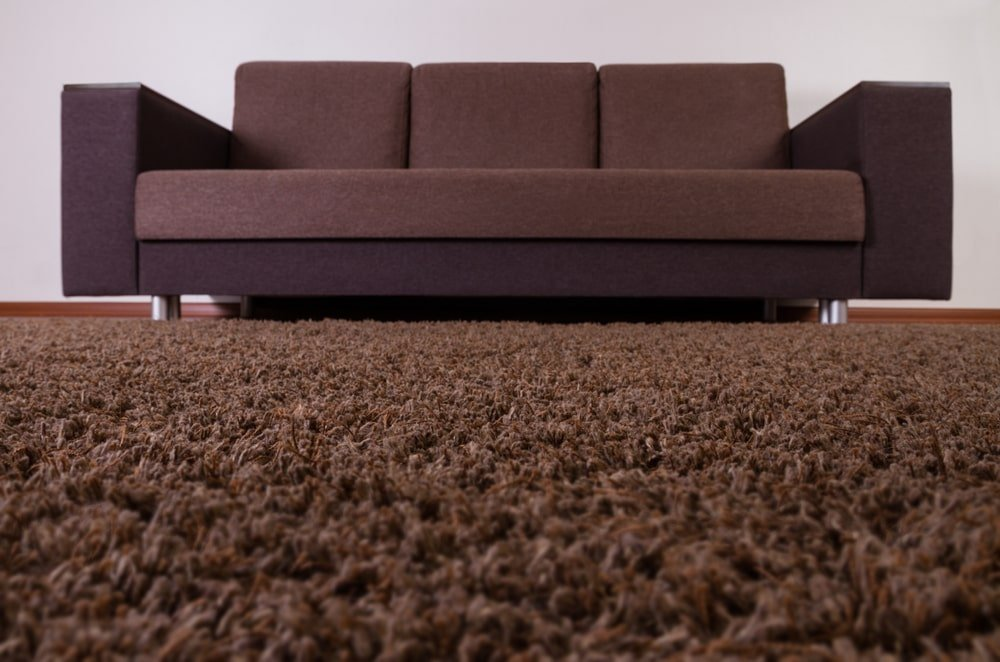 This is a close look at a living room's brown carpet and sofa.