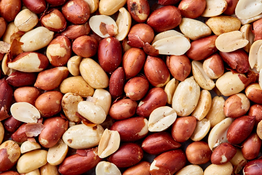 A close look at a bunch of roasted peanuts.