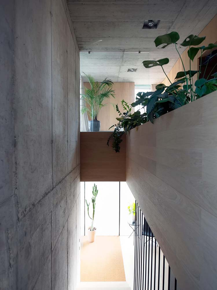 The indoor balcony above the staircase of the house is lined with wooden planters that pair well with the plants.