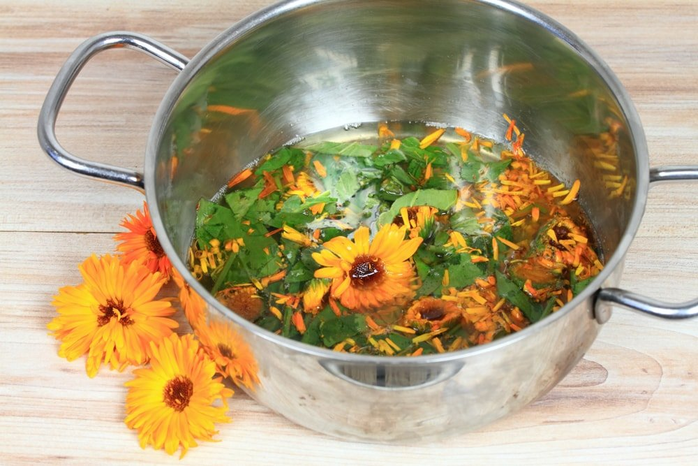 This is a close at a bunch of calendula flowers and leaves about to be processed for its medicinal properties.