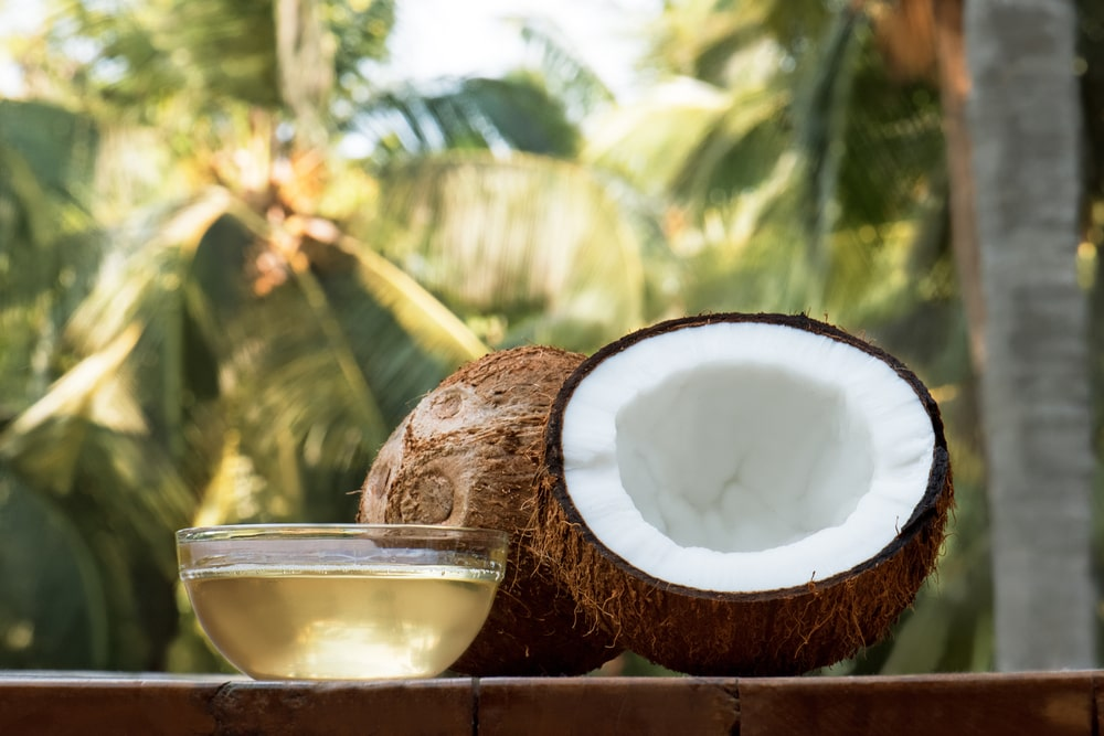 Coconut fruit and oil against coconut tree background.