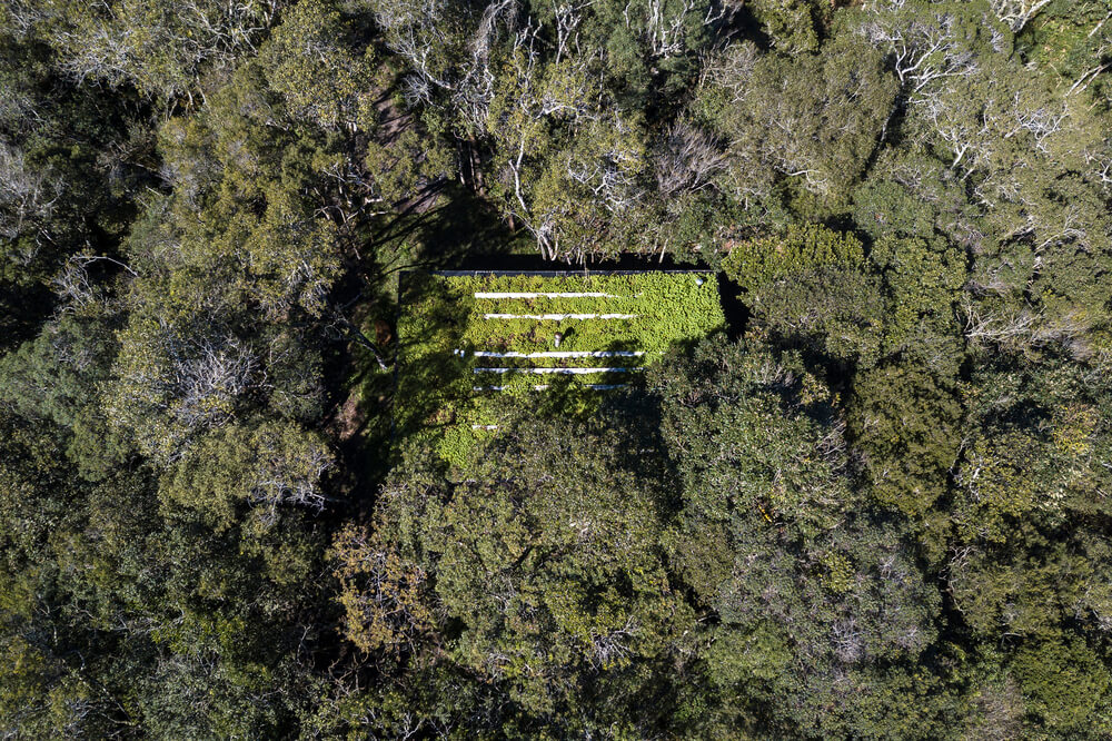 This is an aerial view of the house that has a grass lawn on its rooftop to pair with the surrounding lush tall treetops.