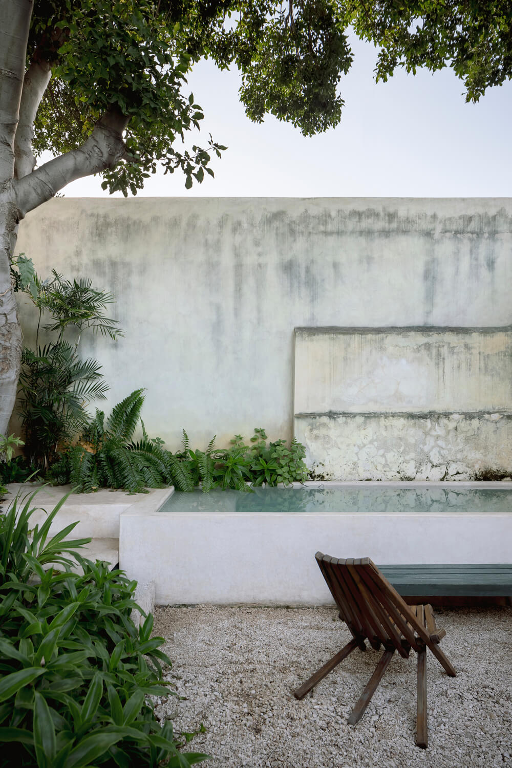 The backyard pool is placed by the tall concrete wall adorned by the landscaping of shrubs and tree.