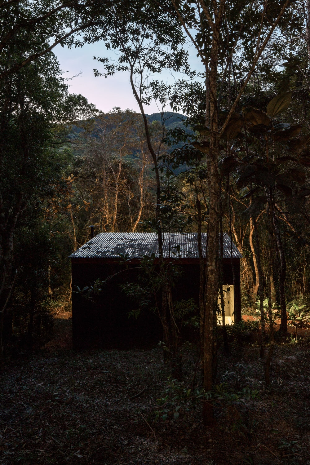 The house has a warm glow that makes it stand out against the dark nighttime forest around it.